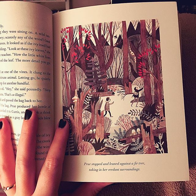 There's nothing like curling up in your bed and reading til you can't keep your eyes open anymore. ❤️ #wildwoodbook just keeps getting better! Had to document the first in-color illustration of the book. @carsonellis