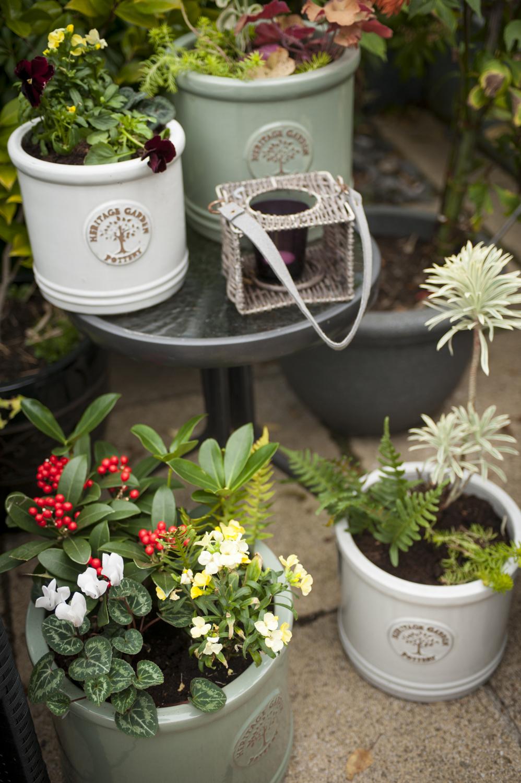 pots-and-pateriors-winter-garden-pots-patio.JPG