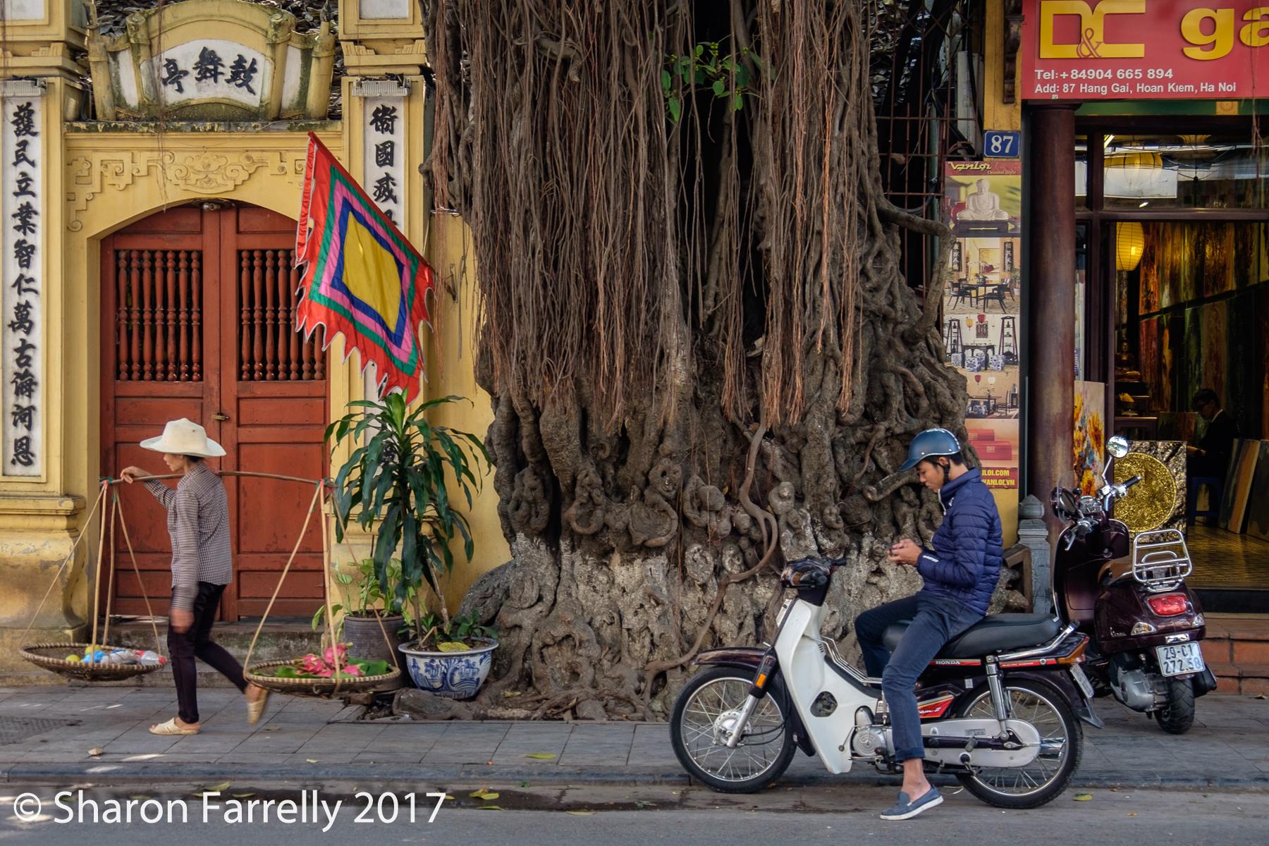 Hanoi-2017-0429.jpg