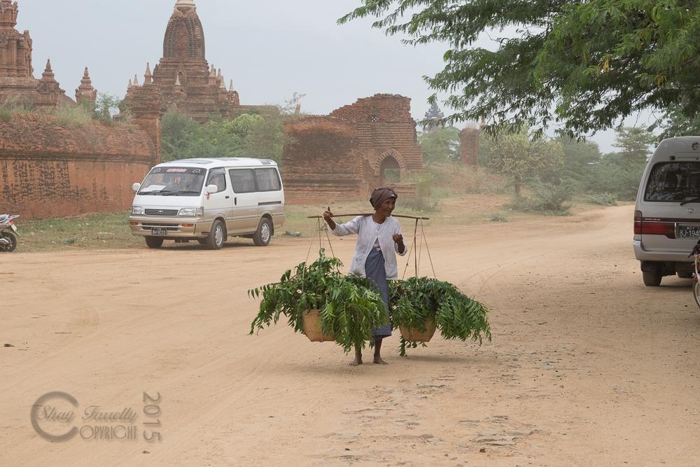 BaganDay10-3501.jpg