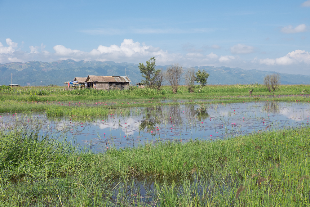 Inle-LakeDay4-1402.jpg