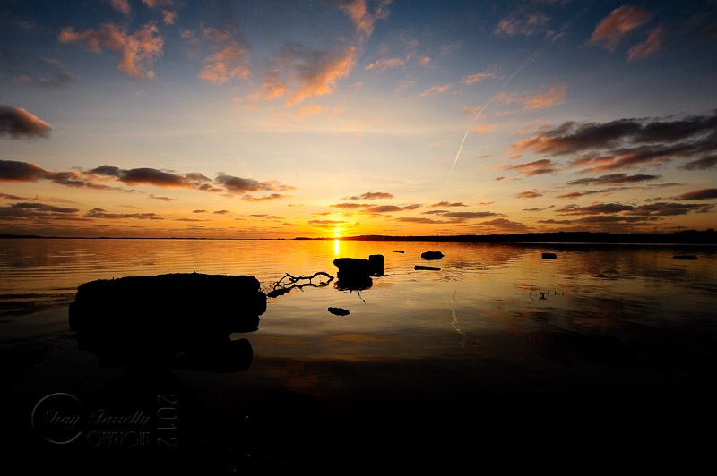 estuary-9694_120202.jpg