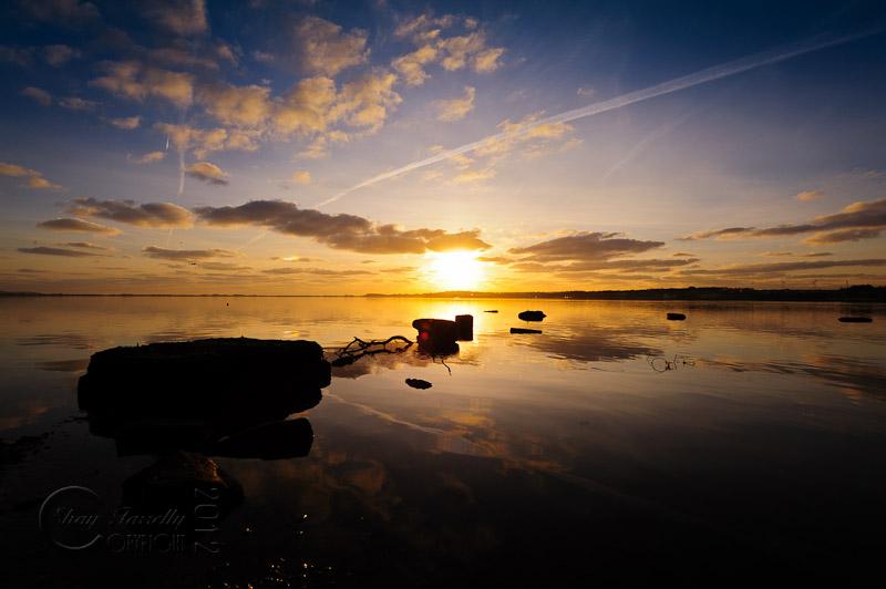 estuary-9908_120202.jpg