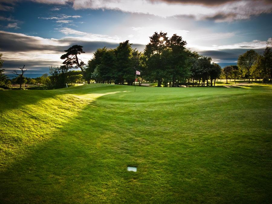shay-golf-2.jpg