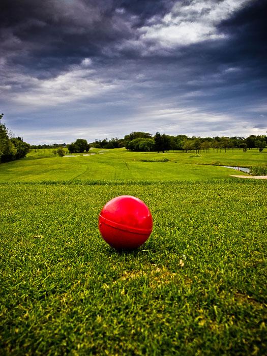 shay-golf-6.jpg