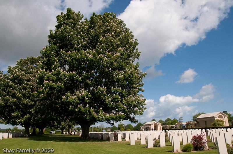 Normandy09-495.jpg