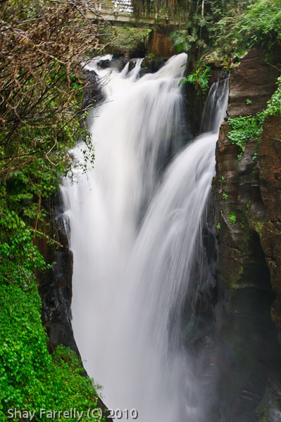 IguazuFalls-189.jpg