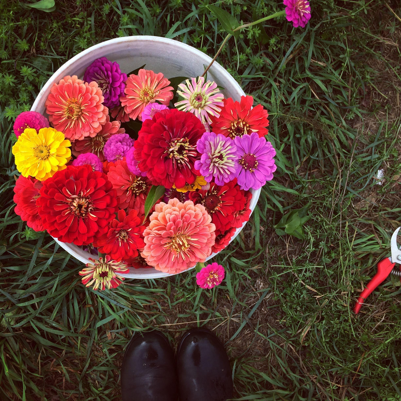 floral - 3.jpg