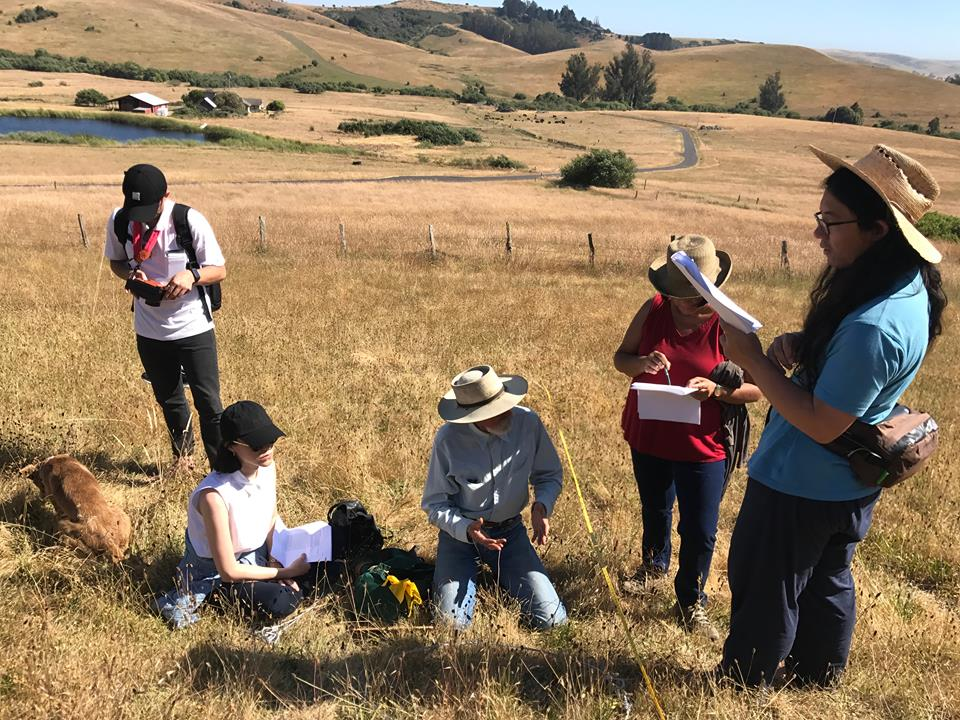 attentive monitoring - We are trained in systems of ecological monitoring, so that we can track the ways in which our grazing practices influence plants, animals, soil, and water, and record trends over time.