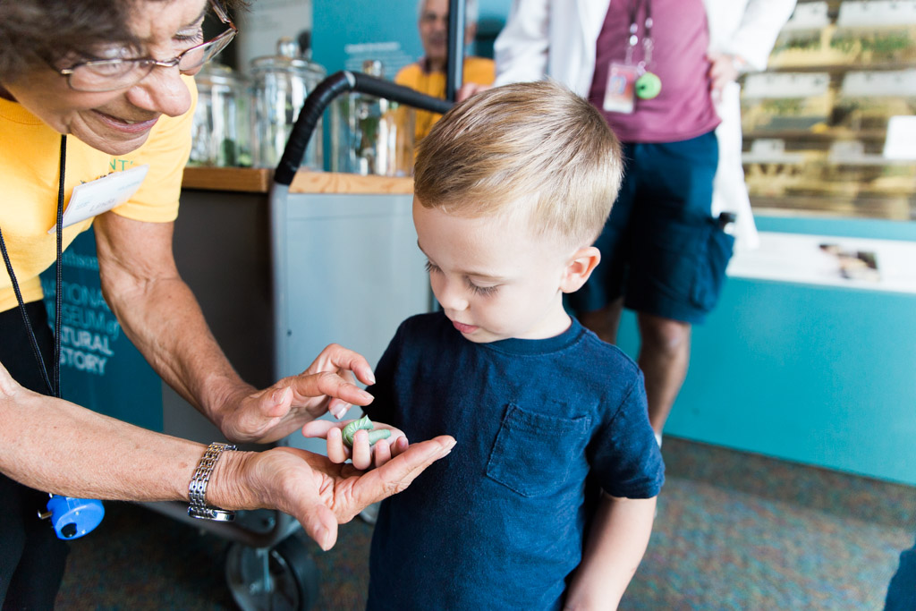 My son holding a green caterpillar with the help of a Smithsonian volunteer at the Museum of Natural History.