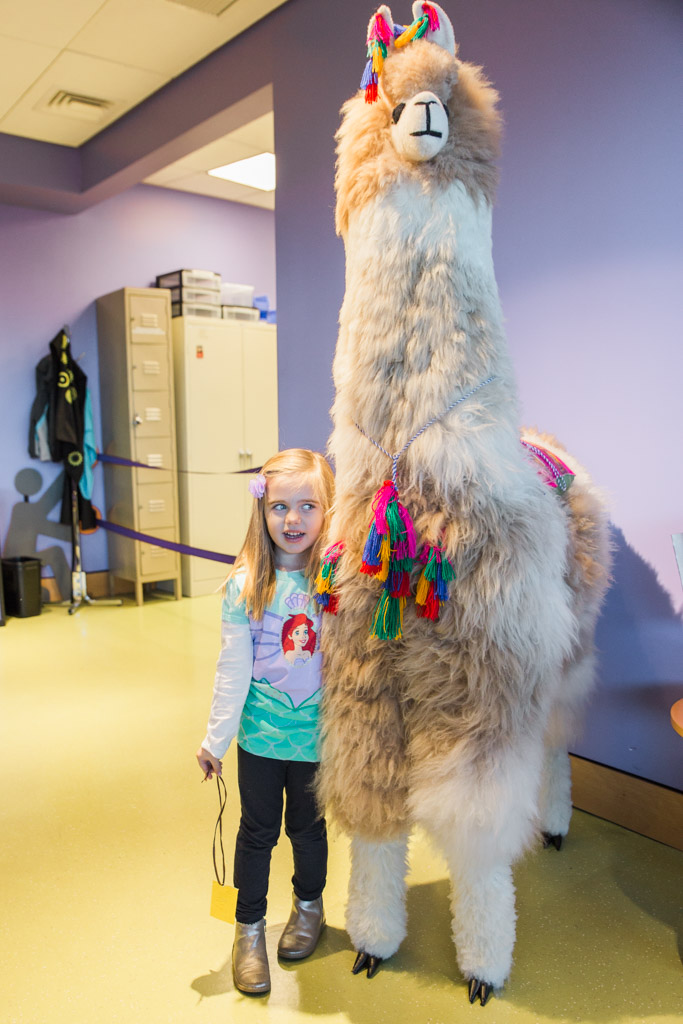 My daughter posing with a stuffed llama at the imagiNATIONS exhibit at the Museum of the American Indian.