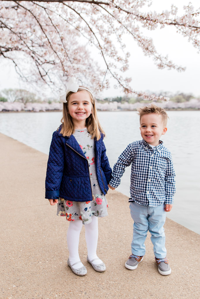 Little girl and her younger brother holding hands at the Tidal Basin in Washington D.C. while the cherry blossoms bloom.