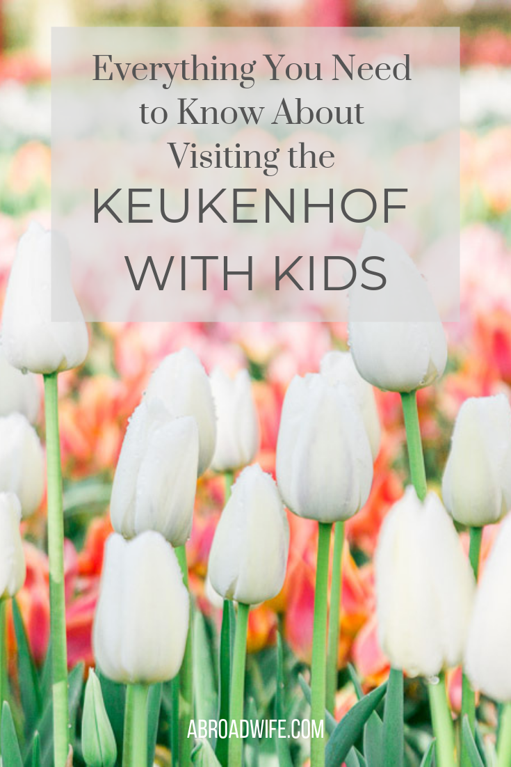 Everything You Need to Know About Visiting the Keukenhof with Kids. Read about all the details to help you have the best time visiting the Keukenhof tulip gardens and tulip fields! #keukenhof #tulips #travelwithkids