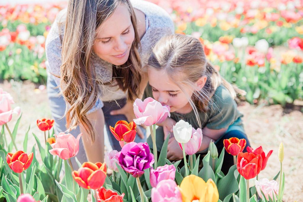 tulips8abroadwife.jpg