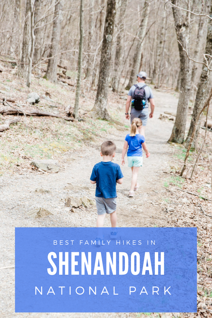 Best Hikes in Shenandoah with Kids. Read on for how to visit Shenandoah National Park with young kids including hiking tips, where to stay, and what to see! #shenandoah #shenandoahwithkids #familyhikes #nationalparkswithkids