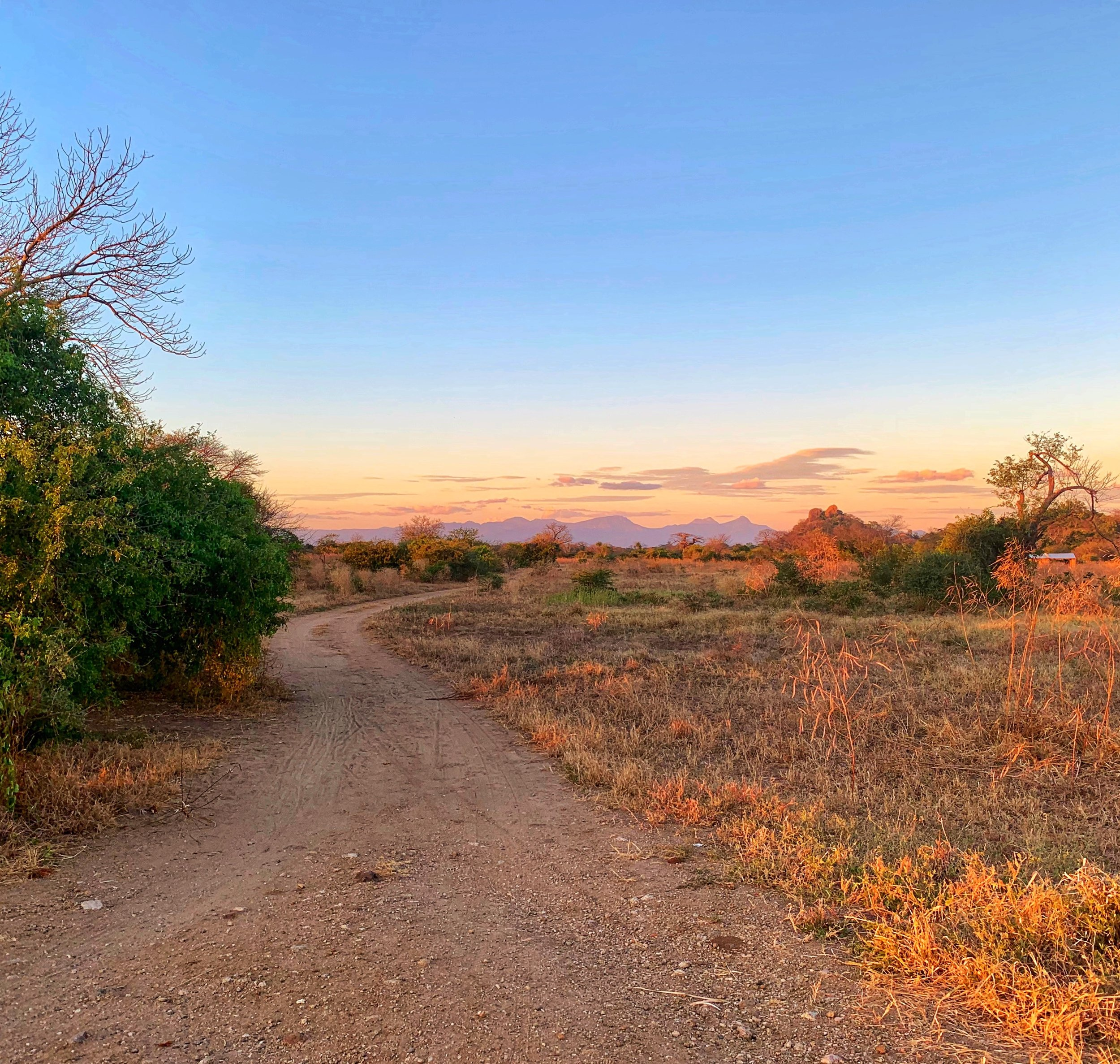 Sunrise at the trailhead for the Malawi course through the breathtaking African countryside.  Photo by Bethany Boll