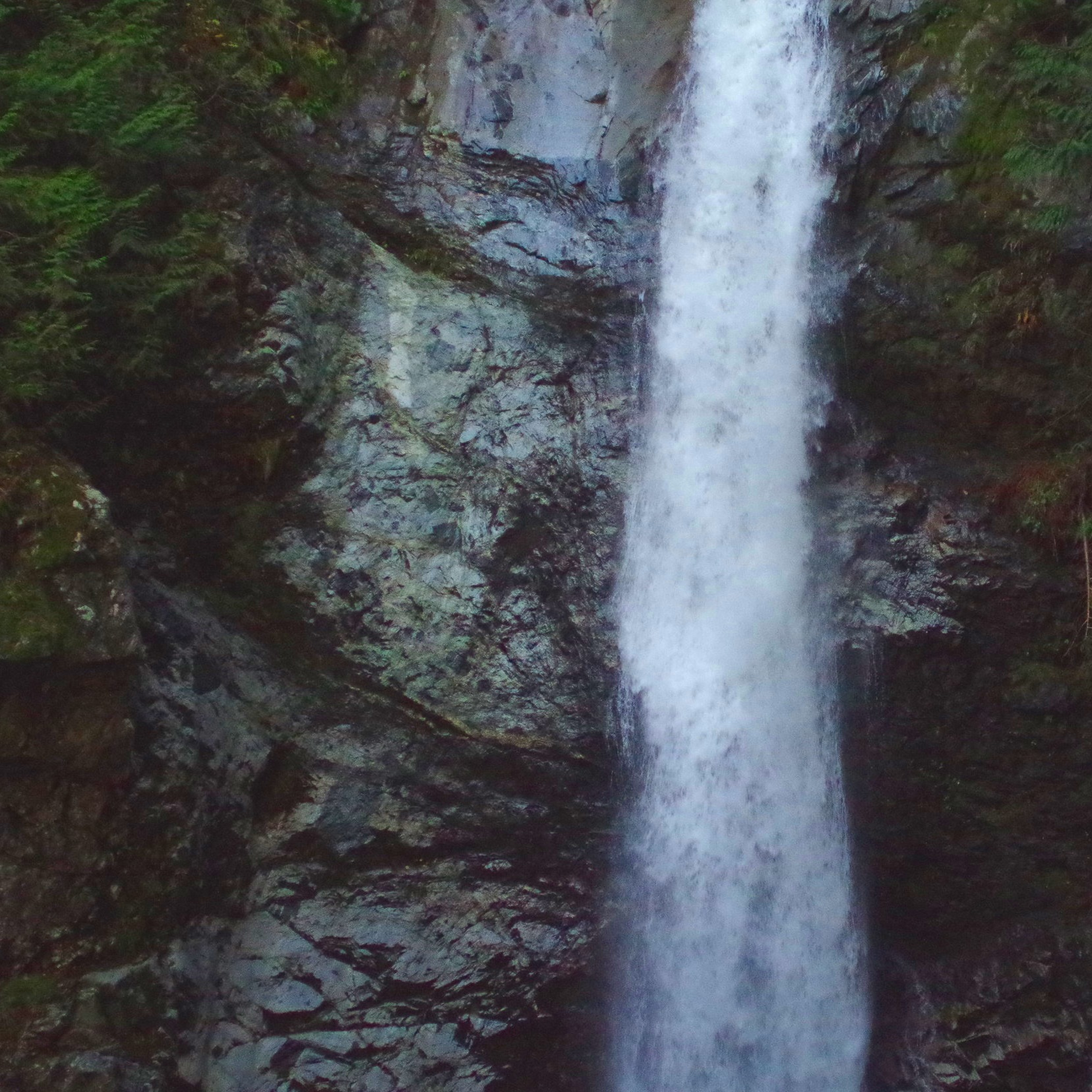 Fraser Valley -
