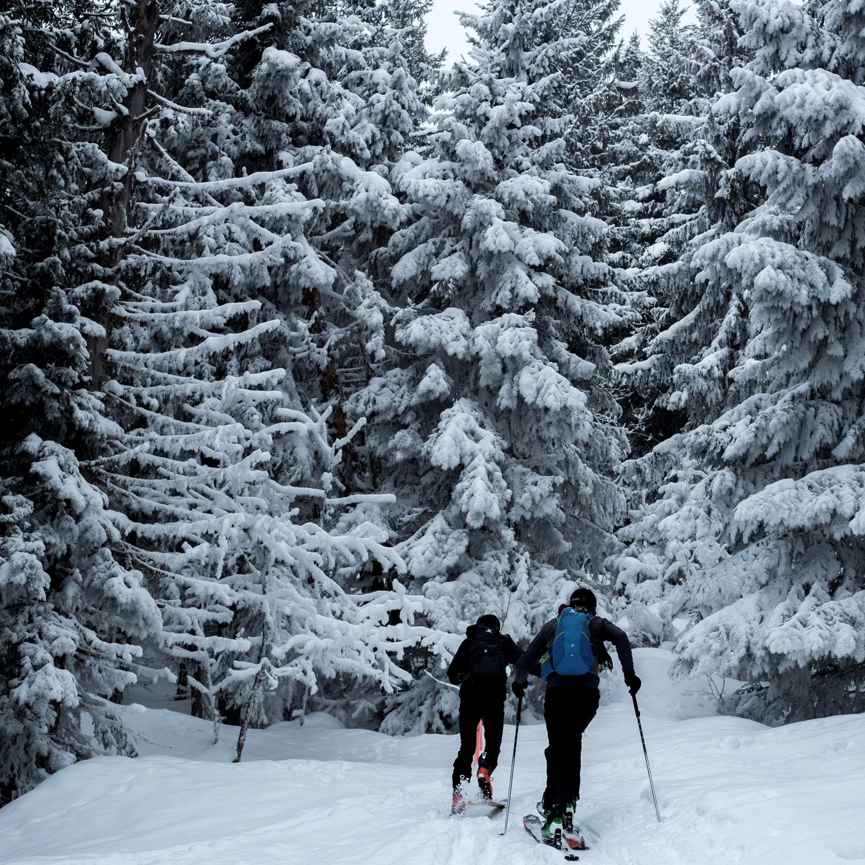 Western Canada Ski Areas Association -