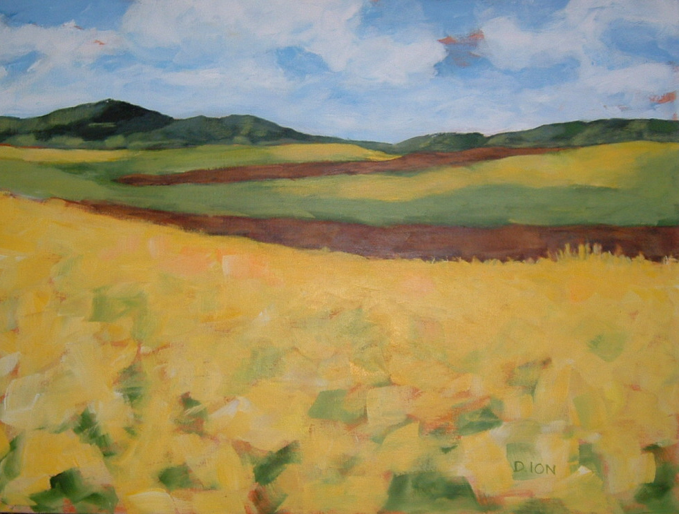Fields Upon Fields 18x24 in.