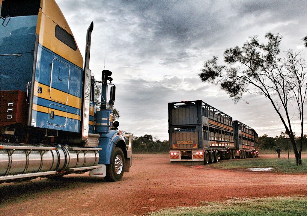 Road Trains of Australia   Road Trains of Australia (RTA) has over a decade of experience in safe & dependable transportation of livestock, petroleum and bulk commodities throughout the north of Western Australia, Northern Territory and Queensland.   About Us
