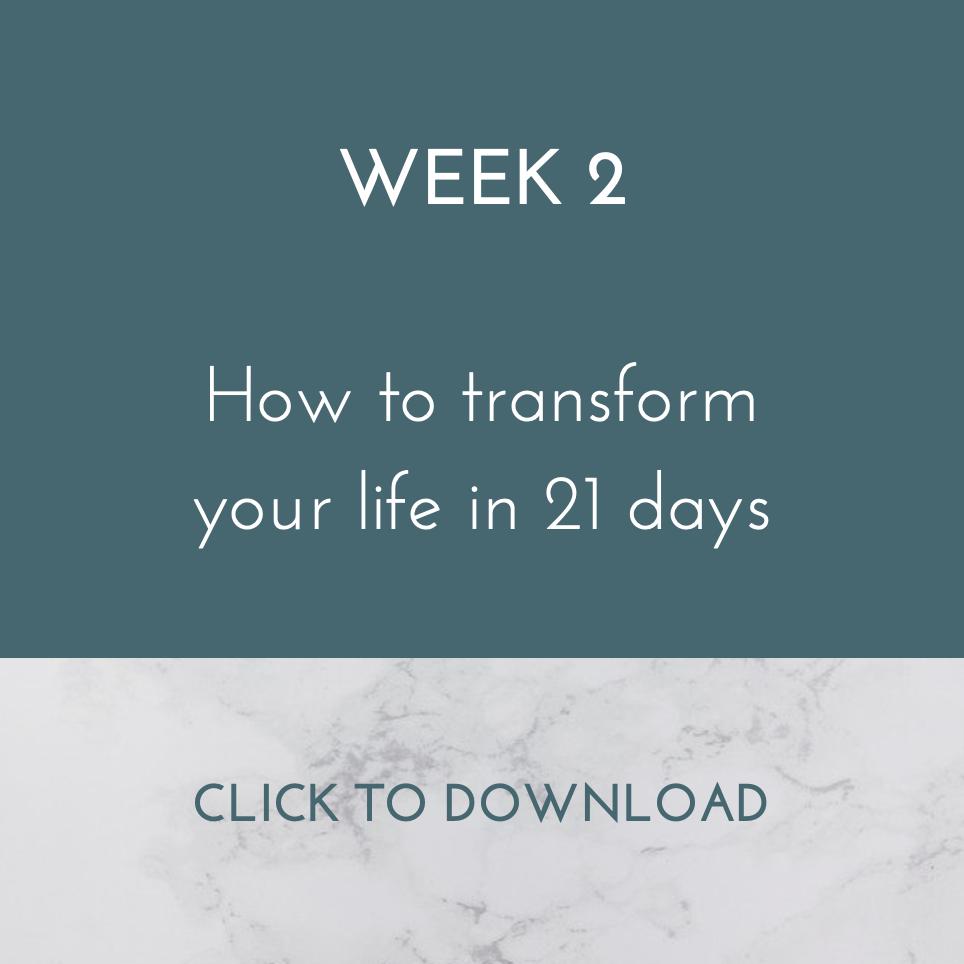 week_2.png