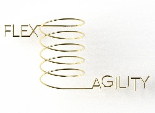 FlexAgility.jpg