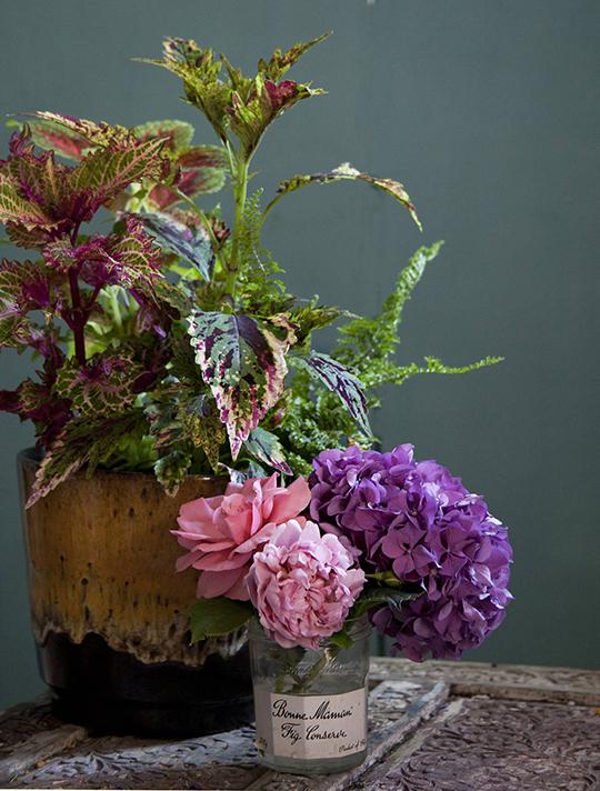 Janice-Issitt-my-fave-flower-5