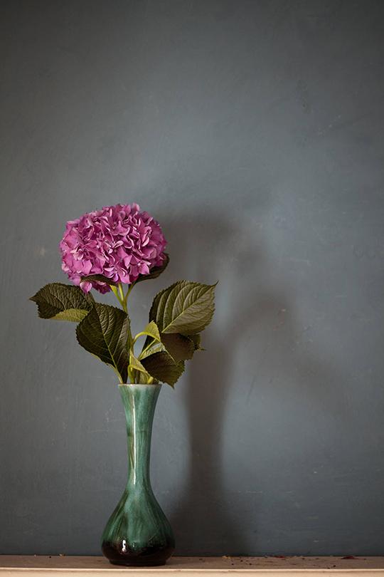 Janice-Issitt-my-fave-flower-6