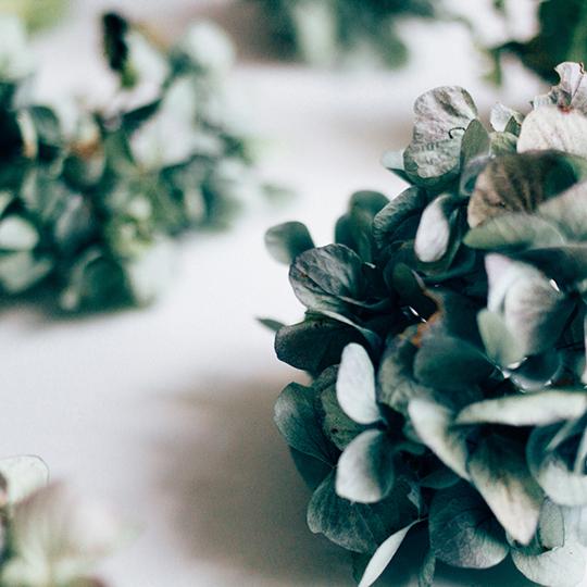 fave-flower-hannah-bullivant-6