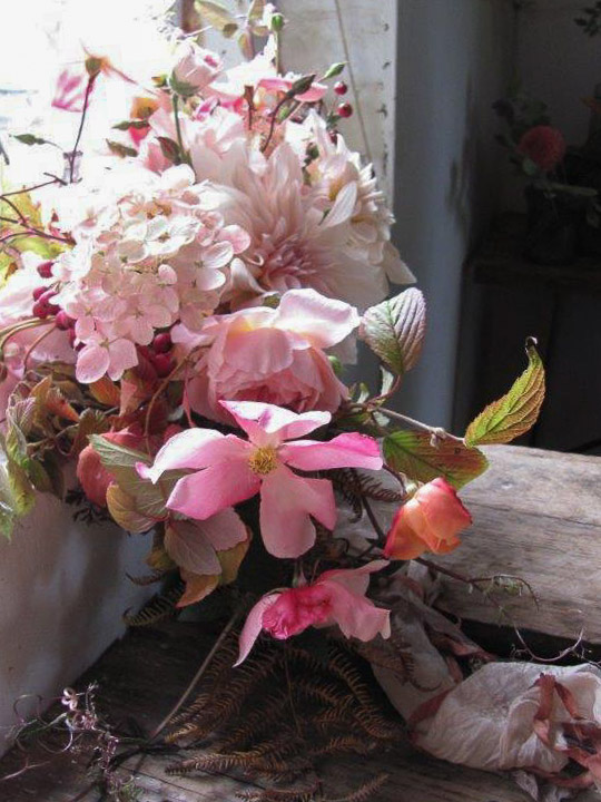Favourite Flower - Susanne Hatwood-5145