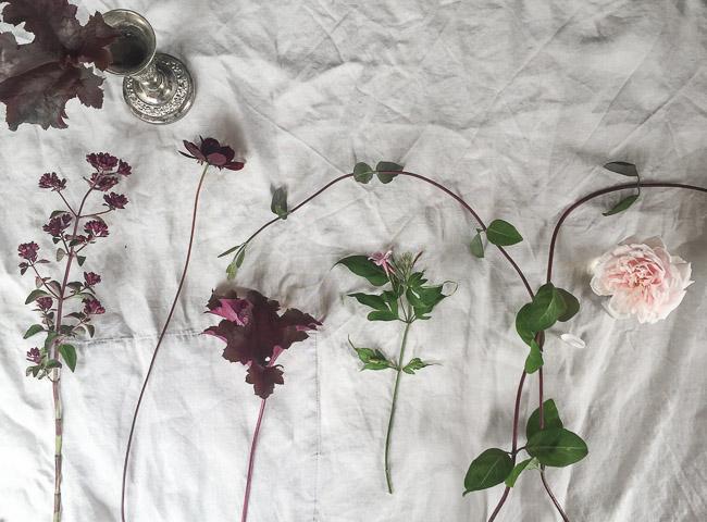 botanika-fave-flower-2320
