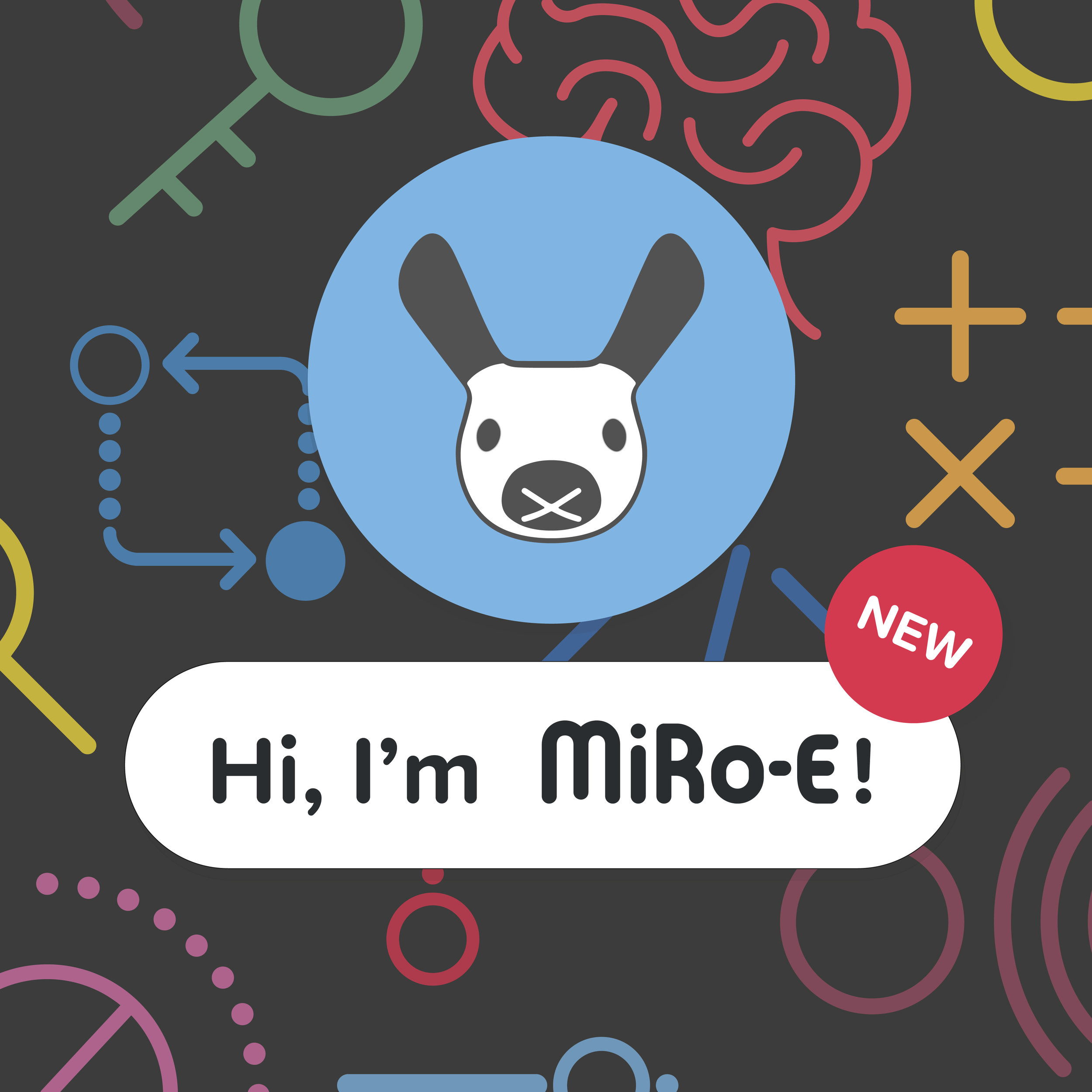 Miro E poster-01-01.jpg