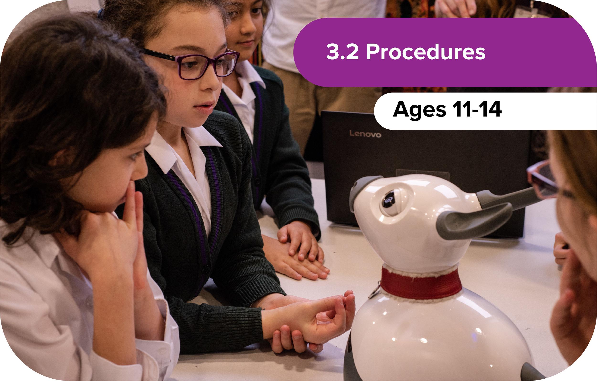 3.2 Procedures
