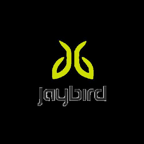 Jaybird.png
