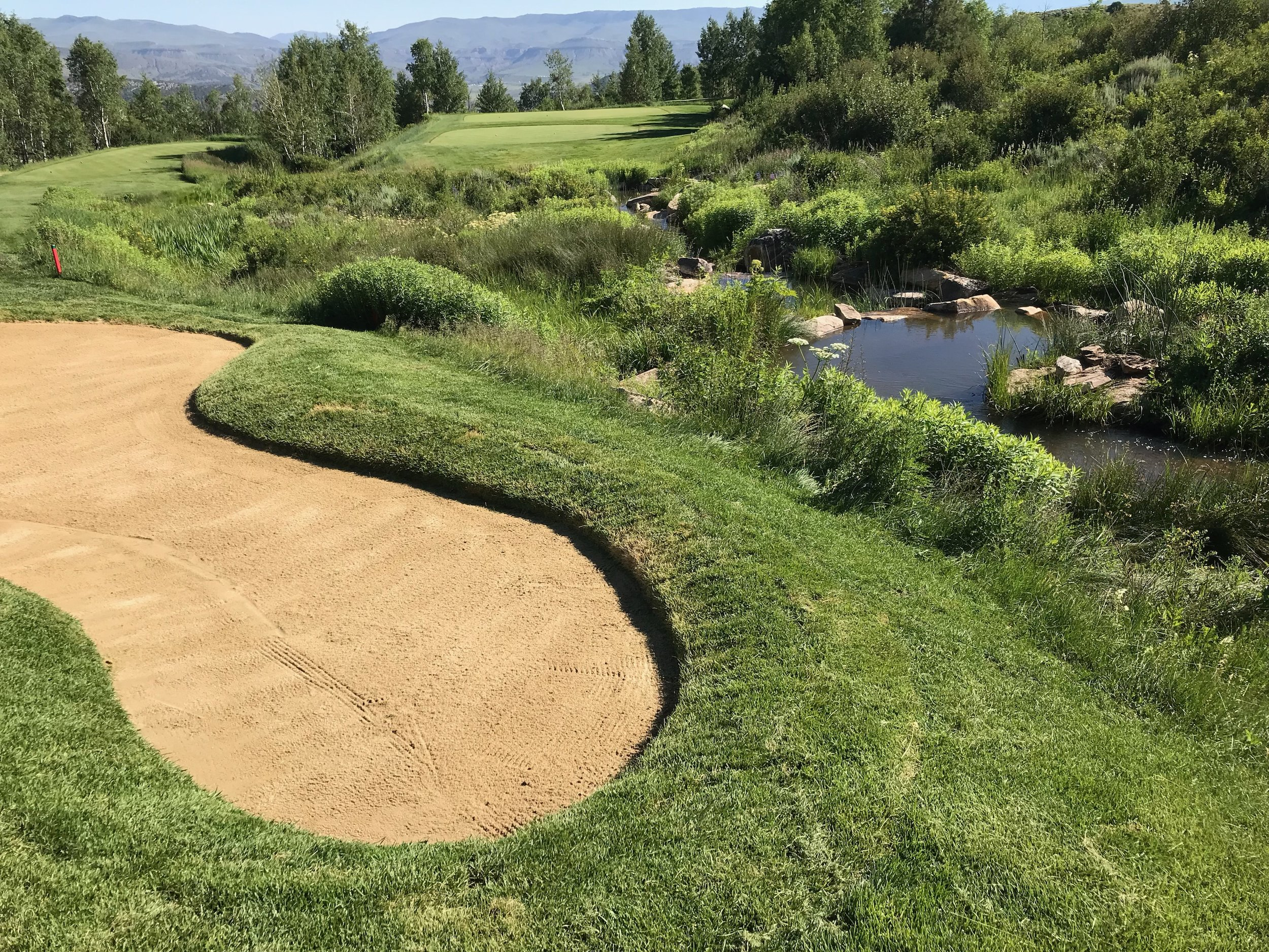 Tan Bunker Sand 7.jpeg