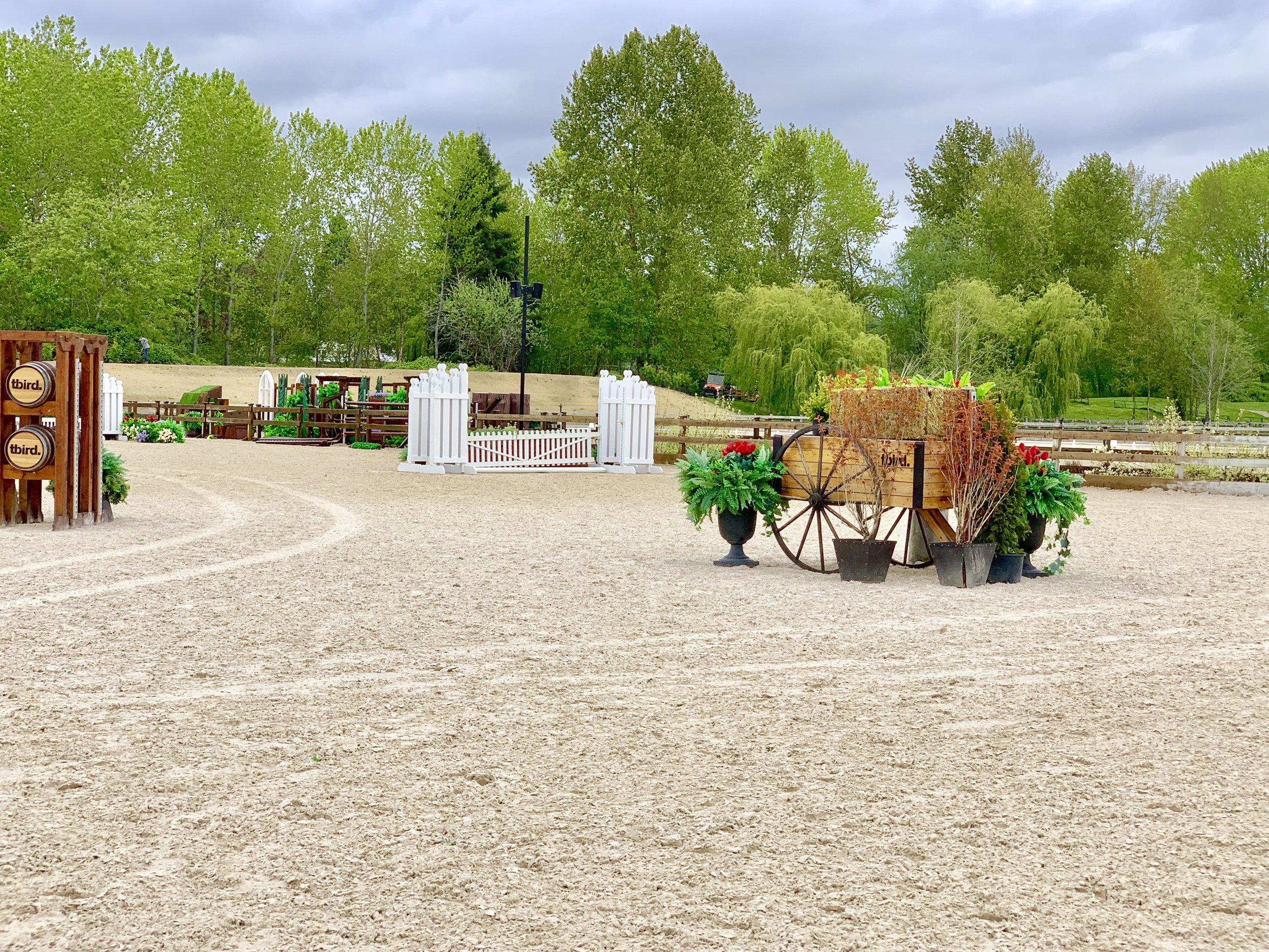 Equestrian Sand 1.jpg