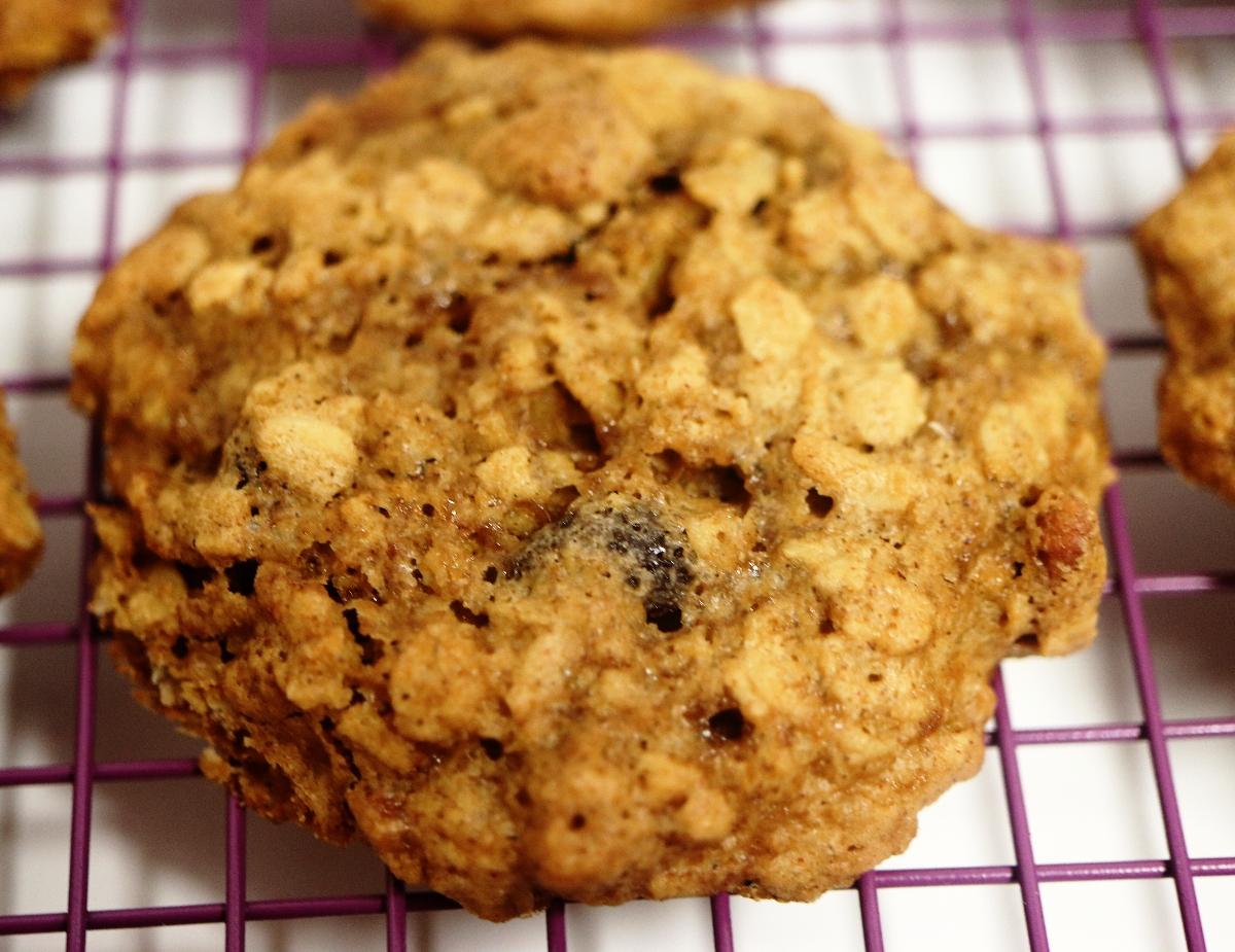 oatmealraisincookie1