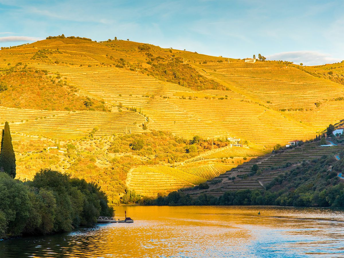 The dramatic hillsides of the Douro River house a number of renowned wineries. The Globe's Portugal River Cruise includes excursions to Quinta da=Aveleda, Quinta do Tedo, Quinta do Crasto, and Quinta Nova