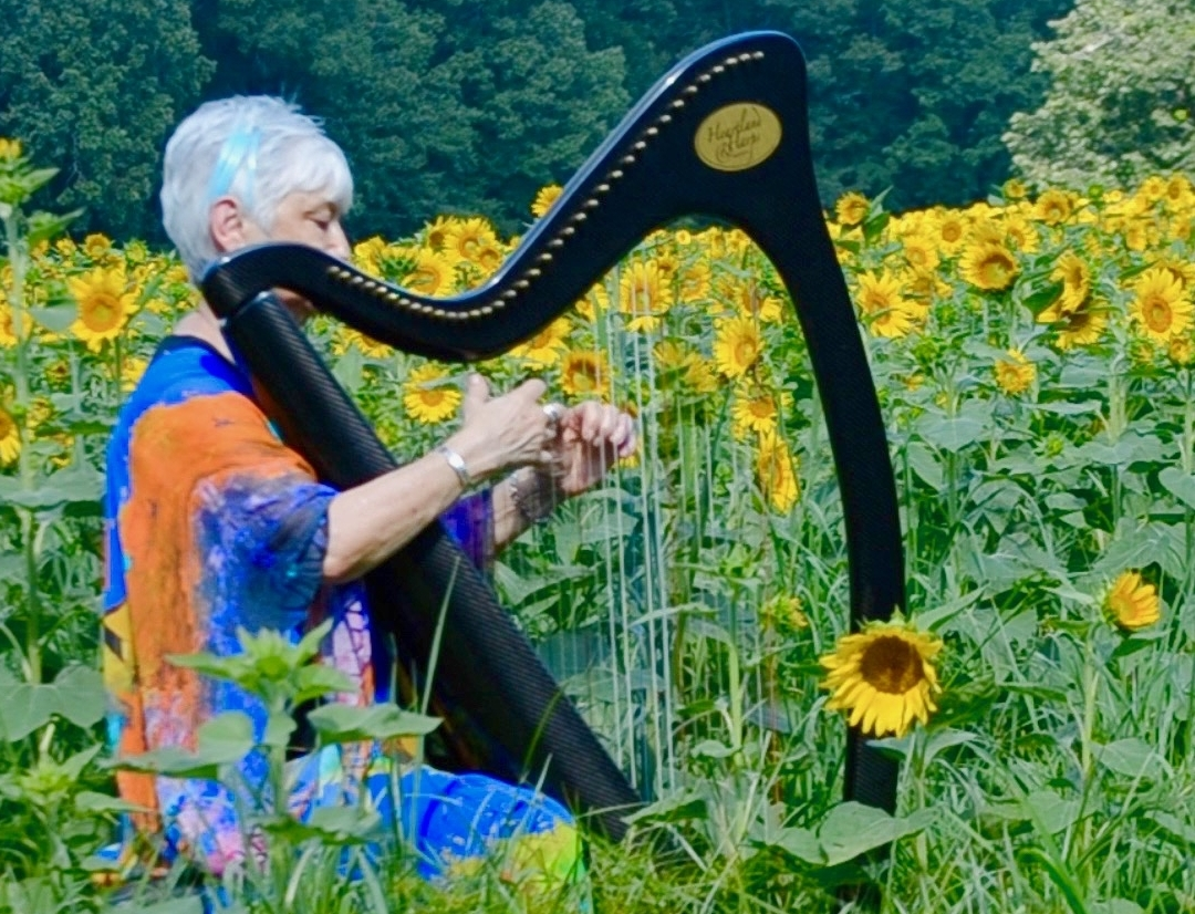 Come join us - June performs solo and as half of the duo River Dreams. Click to see a full schedule of upcoming events.