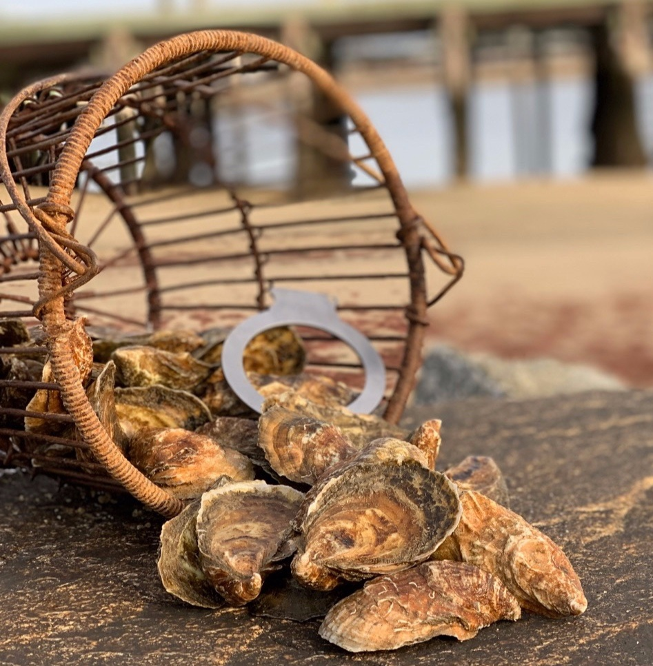 The premier Wellfleet Oyster - From Our Farm to YouHolbrook Oyster is Jacob Dalby, Justin Dalby and Zack Dixon. Justin and Jake are sixth generation Wellfleet Holbrooks. The Holbrooks have owned farms, inns and stables in Wellfleet for close to 200 years. Jake and Justin's dad, Cliff, taught them Oystering on the family shellfish bed. They're out on the water every day, farming Oysters in the hard-working tradition of generations of Wellfleet Holbrooks.
