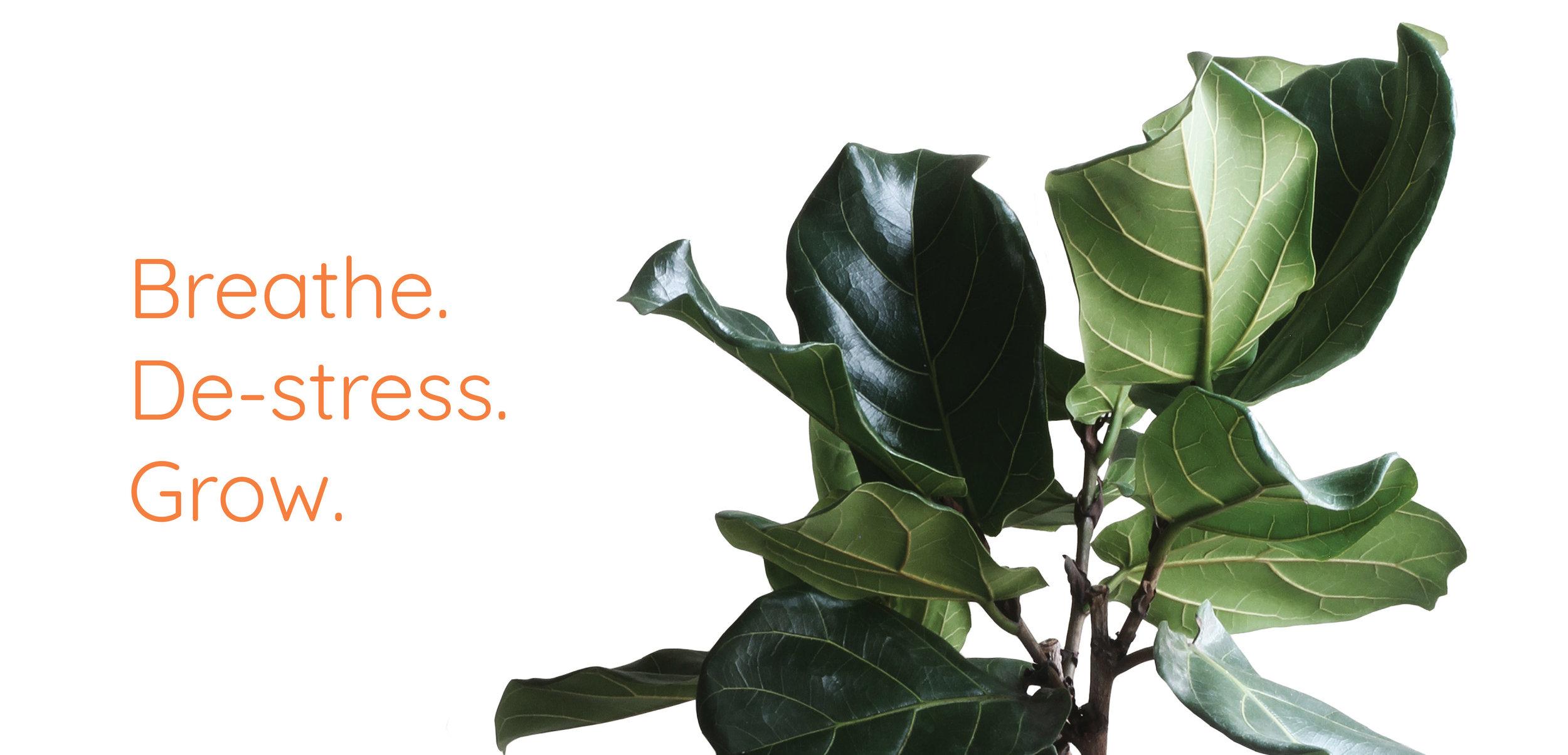 Breathe. Destress. Grow.