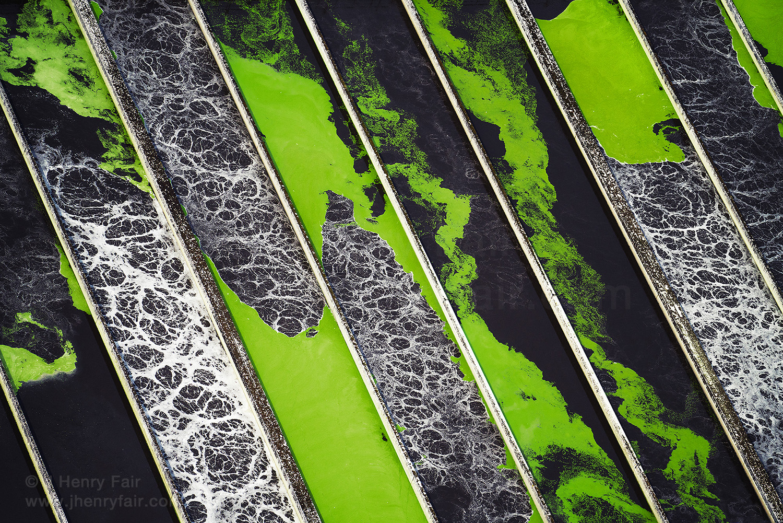 Marine Plastic Litter: Water Treatment Plant