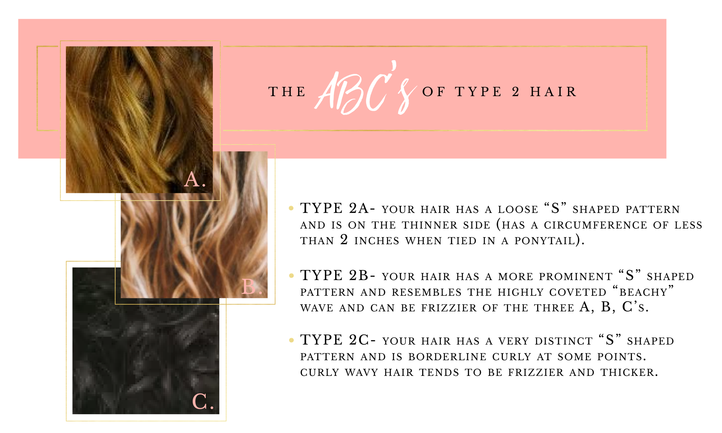 ABCs of Hair Type 2-03.png