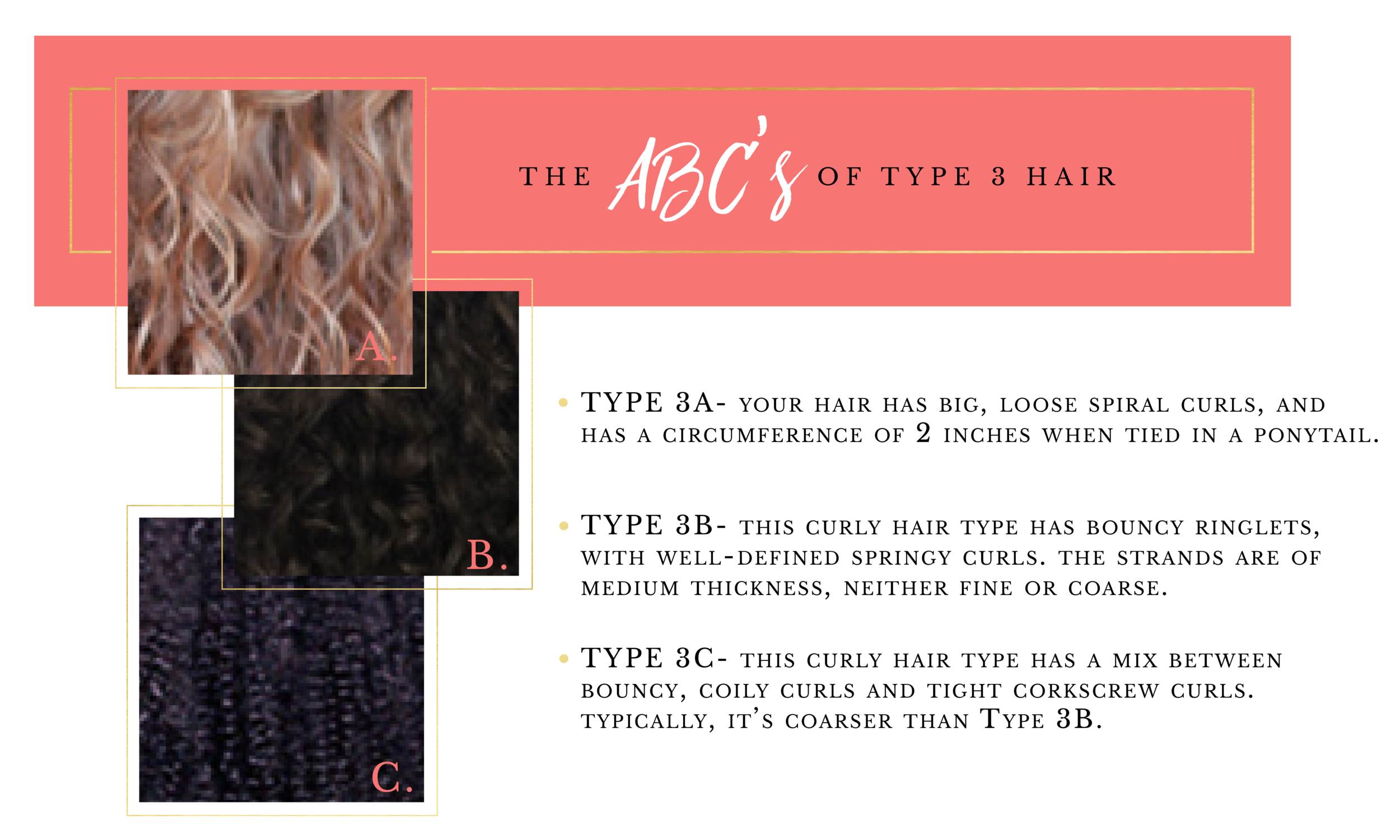 ABCs of Hair Type 3-04.png