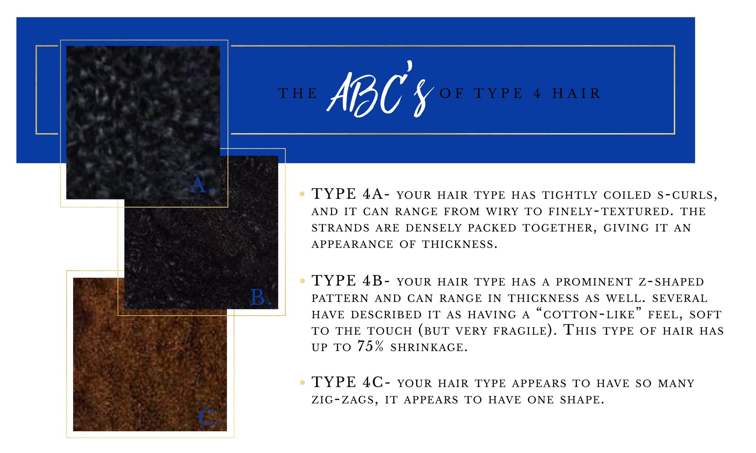 ABCs of Hair Type 4-05.png