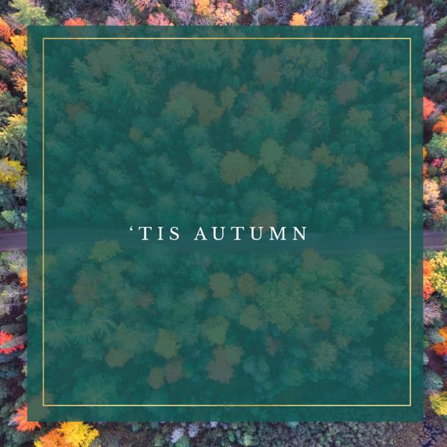 Tis Autumn Square.png