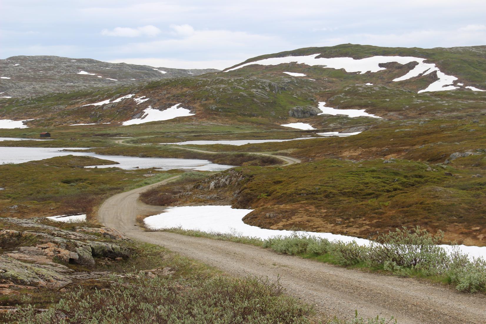 Toppen av veien, med utsikt vestover. Foto: Odd Bakken