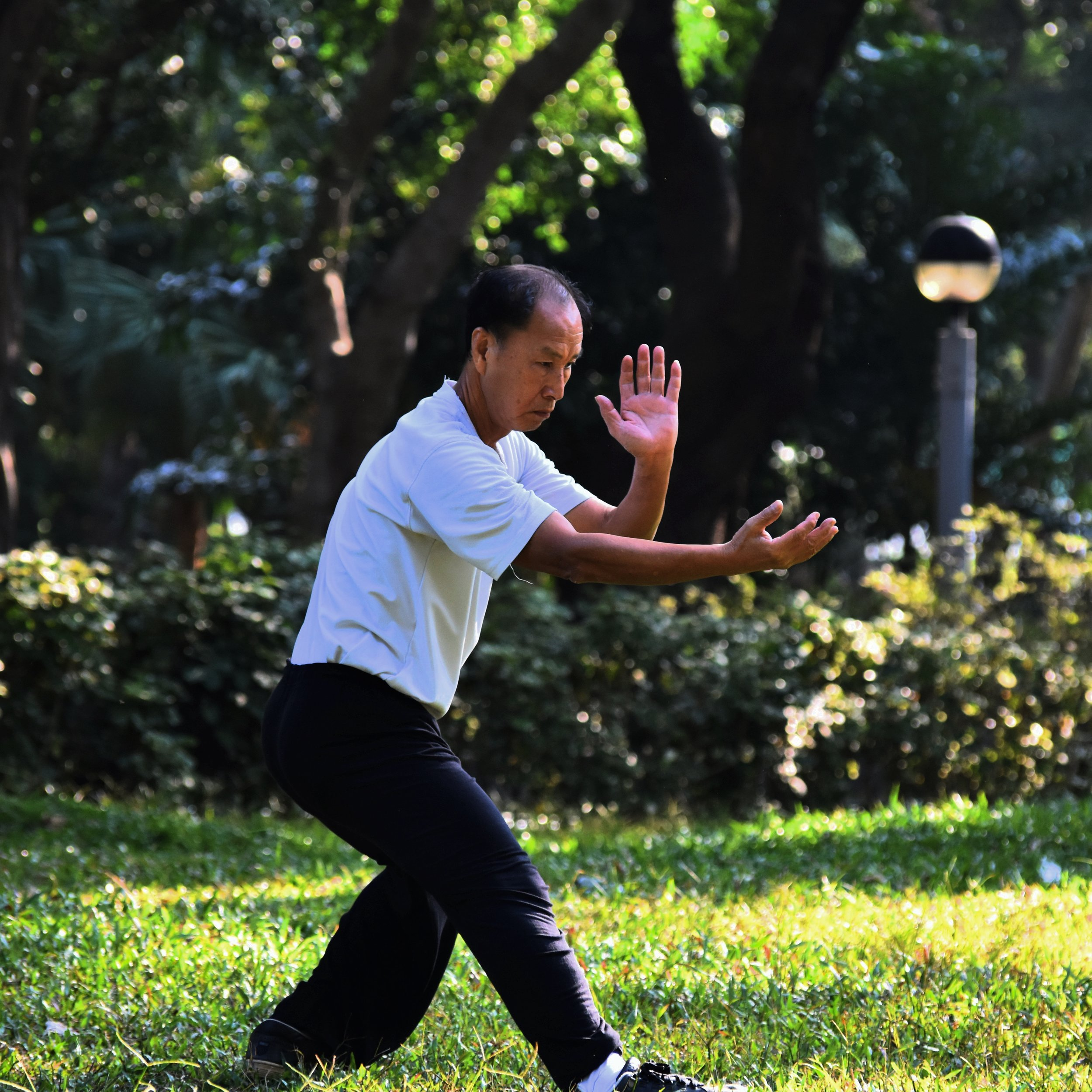 Tai Chi and postural stability in patients with parkinson's disease - Fuzhong Li, Ph.D., Peter Harmer, Ph.D., M.P.H., Kathleen Fitzgerald, M.D., Elizabeth Eckstrom, M.D., M.P.H., Ronald Stock, M.D., Johnny Galver, P.T., Gianni Maddalozzo, Ph.D., and Sara S. Batya, M.D.