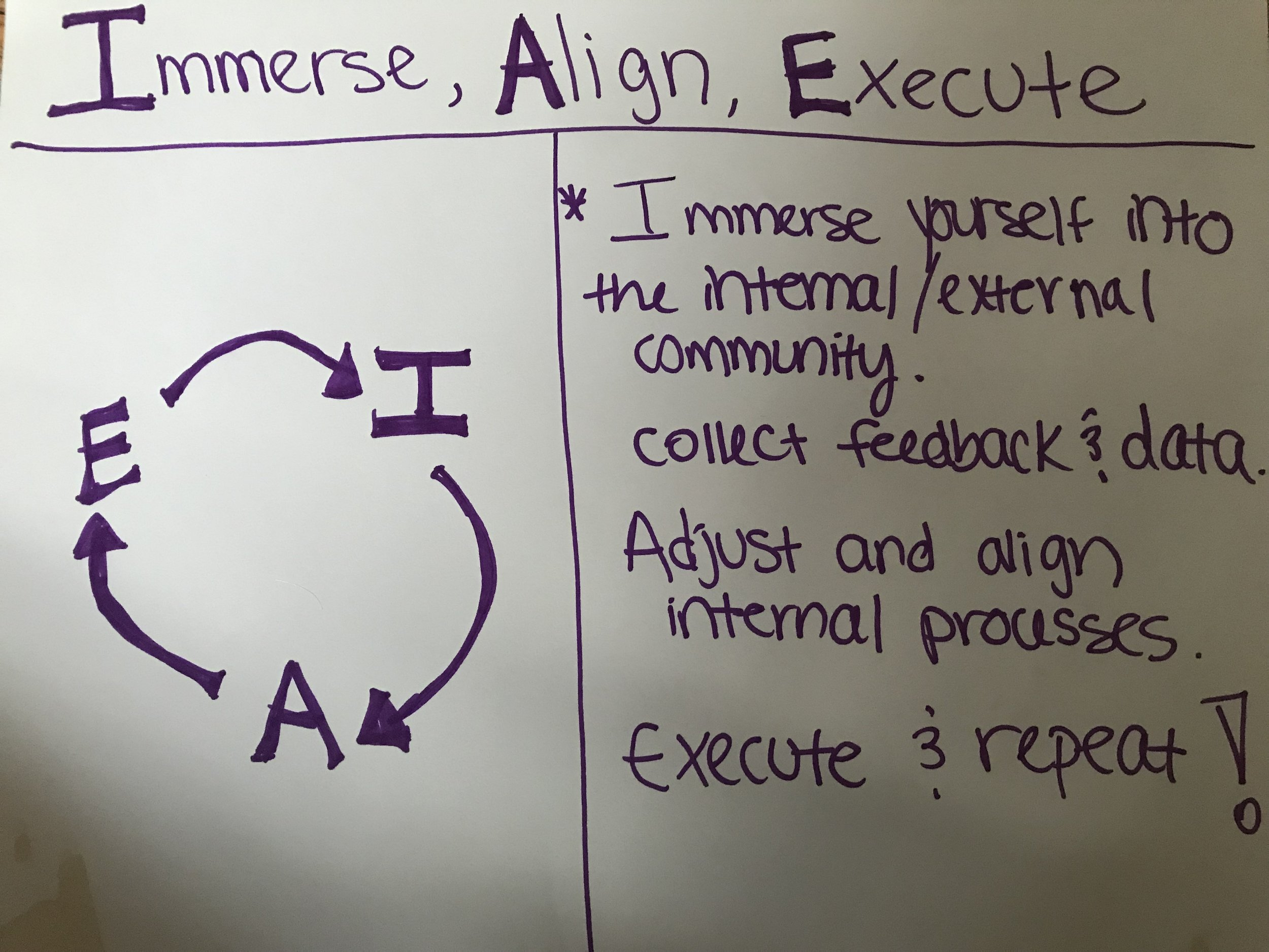 Immerse, Align, Execute