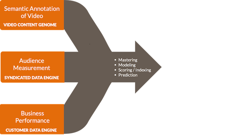 transform_product_workflow_6 copy.png